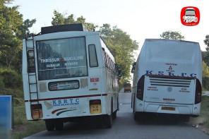 kerala-rtc-and-karnataka-rtc-buses