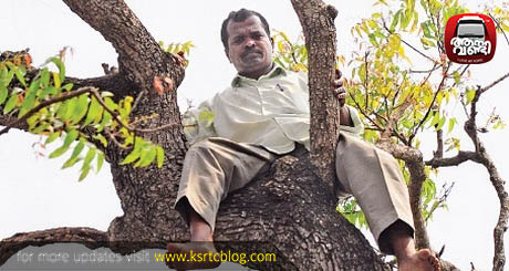 PSC Rank Holder Climbs up Tree, Stages Suicide Drama