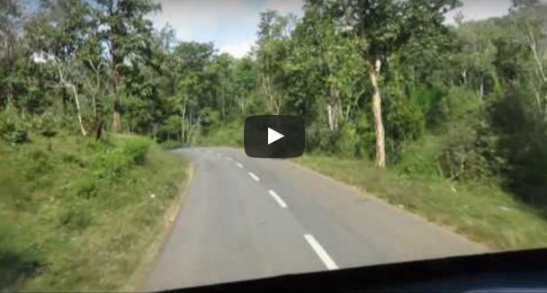 KSRTC Journey to Kutta through Tholppetty Forest areas