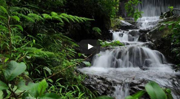 Palaruvi Waterfalls in Kerala