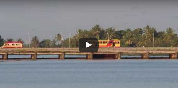KSRTC Buses on Thottappally Spillway