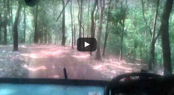 Podiyakkala – Vithua KSRTC Ordinary off road experience !